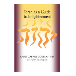 Book - Torah as a Guide to Enlightenment, 692 Pages